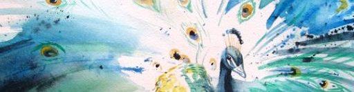 Peacock Class Blog